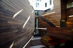 MoMu entrance hall: staircase and wood panelling walls